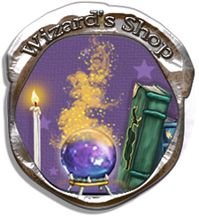 "Silver circle ""Wizard's Shop"""
